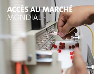acces-au-marche-mondial-fr