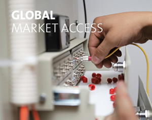 france-global-market-access